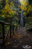 Lothlorien (xrhstos.bas23) Tags: greece rhodope drama livaditis water waterfalls nature longexposure landscape autumn path trees macedoniagreece makedonia timeless macedonian μακεδονια