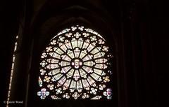 Carcassonne - La Cit - Eglise Saint-Nazaire (Fontaines de Rome) Tags: carcassonne cit eglise saintnazaire saint nazaire vitrail rosace