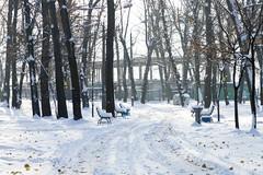 _DSC0217 (Artem_Kotenko) Tags: sony a77 a77v minolta 2485 2485mm kyiv winter autumn sun river bridge park snow cold portrait water walkway