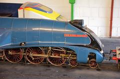 4498 60007 Sir Nigel Gresley (davids pix) Tags: 4498 60007 sir nigel gresley narrow gauge 1025 eastleigh lakeside railway 2016 22102016
