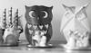 (luizaschalcher) Tags: decoração blackandwhite monochrome indoor enfeites corujas ornaments owls