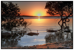 Mangrove Reflections (juliewilliams11) Tags: photoborder outdoor sunset serene river water landscape shore beach newsouthwales australia filter cokin gnd sand rock sky reflection