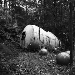 The Capsule (DanRSmith) Tags: bw blackandwhite monochrome mystery sculpture park surrey rolleiflex xenotar 35e kodaktrix rodinal