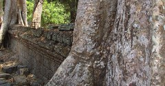 ANGKOR TEMPLES TREES (patrick555666751) Tags: angkortemplestrees temple cambodge cambodia kampuchea flickr heart group asie du sud est south east asia cambodja camboja cambogia kambodscha camboya arbres arbre trees tree arboles