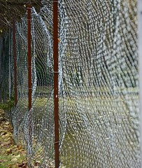 FenceMemory (Tony Tooth) Tags: nikon d7100 nikkor 50mm f18g fence distorted memory abstract stilllife broughpark leek staffs staffordshire