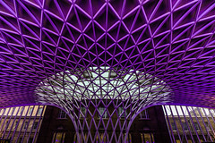 Its all about the roof (21mapple) Tags: roof metal art architecture purple white london kingscross kingscrossstation kings cross station train transport travel tube england britain