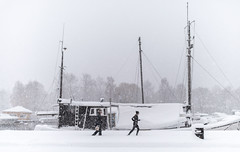 Blizzard, Stockholm, November 9, 2016 (Ulf Bodin) Tags: strandvgen sverige blizzard winter canonef35mmf14liiusm running walking outdoor snow sn urban ship canoneos5dsr vinter stockholm sweden streetphotography snstorm urbanlife stockholmsln se