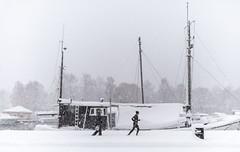 Blizzard, Stockholm, November 9, 2016 (Ulf Bodin) Tags: strandvägen sverige blizzard winter canonef35mmf14liiusm running walking outdoor snow snö urban ship canoneos5dsr vinter stockholm sweden streetphotography snöstorm urbanlife stockholmslän se