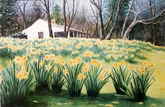 Jonquil Festival at Old Washington, AR - watercolor