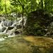 Piccole cascate nella giungla che circonda Palenque