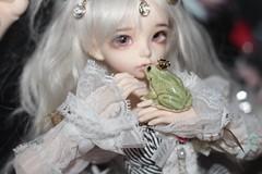 image (Lynnkcm) Tags: new cute alpaca face up set felted photo gorgeous prince mini frog full story figurines needle bjd chic fairyland porcelain ante shabby mline my minifee