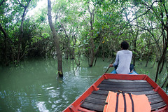 Tonle Sap, Cambodia (Andrew Callaci) Tags: life trip travel boy vacation lake man guy water forest work river photography boat photo kid asia cambodia seasia day foto ride photos picture andrew row tourist photograph mangrove float touristtrap andrewcallaci callaci