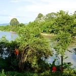 View of the River Kwae Noi with some monks cutting branches from trees from Wat Tham Khao Pun, Kanchanaburi, Thailand thumbnail