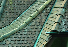Ceramic Tiled Roof 02 (Dan Daniels) Tags: roofs tiledroofs audand