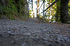 Beacon Rock State Park (Garrett Rock) Tags: statepark bridge rock stairs climb washington columbia trail columbiariver granite pacificnorthwest gorge washingtonstate monolith steep basalt lewisandclark ascend vantagepoint beaconrock bonnevilledam columbiarivergorgenationalscenicarea columbiarivervalley stateroute14 beatenrock