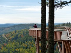 Black Forest: Ellbachsee lookout point (romanboed) Tags: travel autumn trees panorama lake black reflection fall leaves forest germany landscape europe hiking foliage schwarzwald baiersbronn mitteltal ellbach ellbachsee
