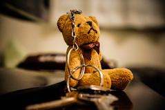 Chaveirinho (KakaR2R) Tags: urso chaveiro pelúcia ursinho sonynexf3