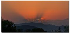 Natures Rim Lighting (danishpm) Tags: summer sun sunrise australia nsw aus sunrays theworldwelivein canon5dmkiii 5dmkiii sorenmartensen ef70200mmf28lisiiusm murwilllumbah