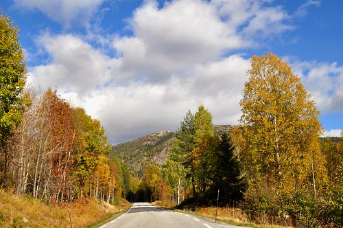Autumn road with blue sky and great clouds