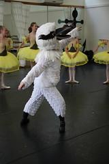 IMG_9566 (nda_photographer) Tags: boy ballet girl dance concert babies contemporary character jazz newcastledanceacademy