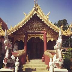 มาทำบุญสักการะพ่อหมอชีวกโกมารภัจจ์เป็นสิริมงคล ณ วัดลอย #pray #healthy #WatLoikroh #chiangmai #thailand