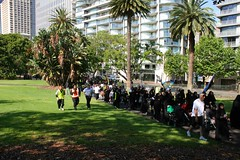 9th Annual Ashura Procession  - Australia 2