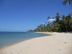 Ko Samui DSCN2344 (White Shark5) Tags: sea sky white fish beach water landscape thailand shark sand dive diving shore