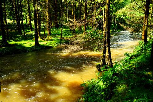 Ranna,Bayrischer Wald (Germany)