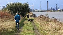 161017boness9960w (GeoJuice) Tags: scotland firthofforth foreshore lagoons bonesstograngemouth aidan pups geojuice geography