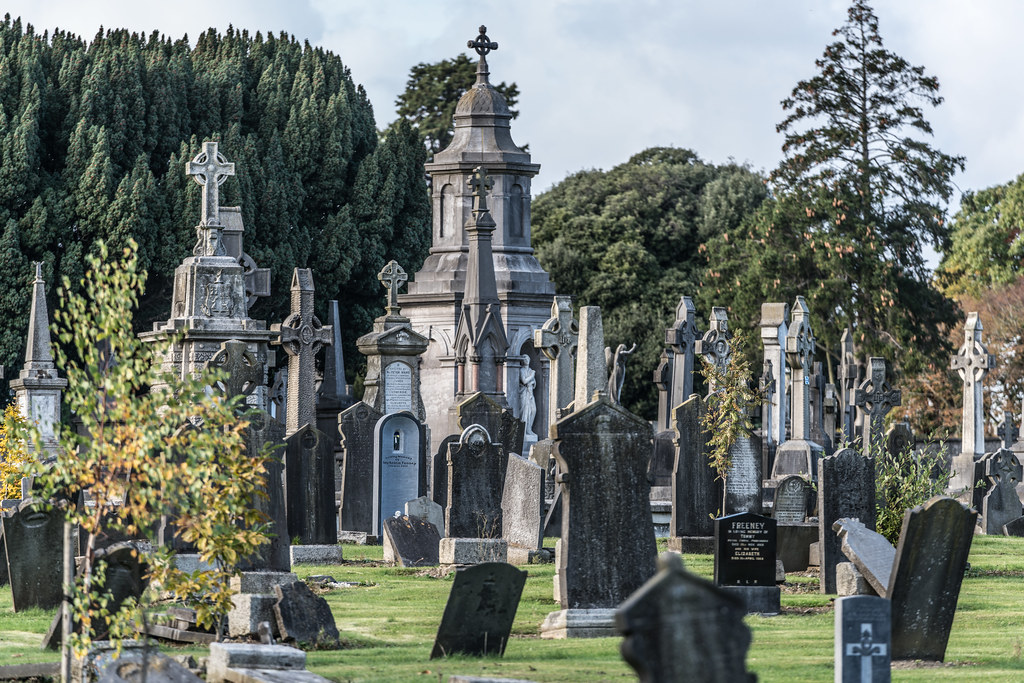 A QUICK VISIT TO GLASNEVIN CEMETERY[SONY F2.8 70-200 GM LENS]-122063