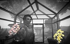 The Weeknd (dylhanbrinner) Tags: taox gabriel unique zed vista dl song daft punk