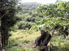 IMG_7691 (kitix524) Tags: travel adventure trekking masungigeoreserve rizalprovince nature mountains caving