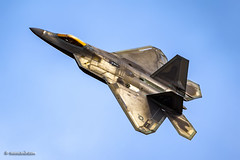 Golden Raptor. (xnir) Tags: f22 raptor lockheedmartin aviation military nir nirbenyosef xnir