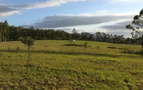 3311 Wallanbah Rd, Dyers Crossing NSW