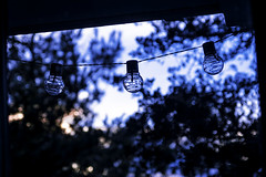 Waiting On The Darkness Color (joegeraci364) Tags: light lamp string outdoor porch patio balcony nature evening night day sunset tree silhouette wire scenic serene quiet summer season