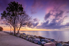 Sea and Tree (Thomas Jahnke) Tags: seascape clouds tokina1116 rgen ostsee sassnitz sunset sunrise morning