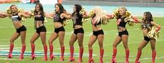 MDC Browns Game 2016 (sdobson_37) Tags: miami dolphins cheerleaders cheerleader