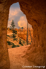 Arch With A View (Cramer Imaging) Tags: outdoor outdoors nature natural landscape scenic sky red blue trail green arch doorway tunnel tree rock rocks rockformation brycecanyon park national brycecanyonnationalpark utah queensgardentrail window view americansouthwest