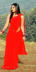 South Actress Deepika Das Hot in Red Sari Photos Set-5 (10)