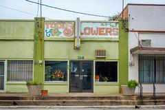 Todd's Flowers (mikerastiello) Tags: texas tx waco wacotx wacotexas decay urbandecay