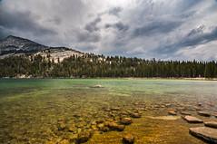 Pure transparency (Ettore Trevisiol) Tags: ettore trevisiol nikon d300 sigma 10 20 yosemite national park tenaya lake