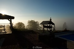 In the morning mist._ (Olivier@6) Tags: mist morning sunrise country puits brume campagne matin mystere