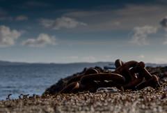 Safety (13 Monkeys) Tags: mull scotland staffa basalt columns fingalscave iron rust sea water clouds