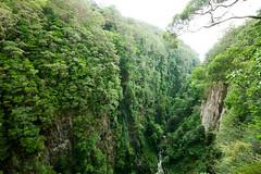 Coomera gorge (ross_coupland) Tags: coomera river lamington national park binna burra rainforest canyon seq south east queensland gold coast hinterland trek bushwalk forest