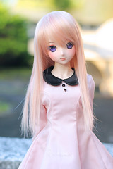 Koneko Hime (krissy_sakura ) Tags: koneko hime ddh09 dollfiedream dollfiedreamsister dds volks vinyl doll pink cotton candy girl bid krissysakura