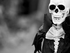 All dressed up with no where to go... (Jam-Gloom) Tags: halloween spooky hallowseve halloweve allhallows olympusomdem5 olympusomd olympusuk 60mm28 60mmmacro28 60mmmacro bokeh bokehful bokehlicious depthoffield dof scary creepy autumn autumnal fall october skeleton skull skele skelly brideandgroom mykindofwedding bride groom hauntingly haunting doll skeletondoll toy