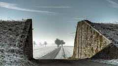Frozen Fields . . . (Geraldos ) Tags: groningen area nsz nieuwstatenzijl rijp ijzig winter koud kalt vriezen vrieskou freezing cold icycold bitter bitterlycold chill wintry frigid glacial hypothermic arctic frozen icy field fields nikon d800 nikon105mmf2ddc geraldos geraldemming