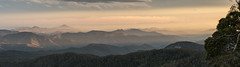 There's gold in them thar hills (Eduardo_il_Magnifico) Tags: mountains sunset forest newengland newenglandnationalpark pointlookout colour sky goldenhour trees clouds ebor newsouthwales nsw australia nikond750 tamron90mmmacrovcusm nisi 3stopsoftgrad polariser tripod