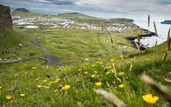 Herjólfsdalur, Helgafell og Stórhöfði (Runolfur Birgir) Tags: placestags fjöll blómogplöntur suðurland other vestmannaeyjar landshlutar