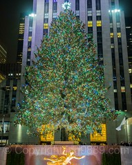 Rockefeller Center Christmas Tree, New York City (jag9889) Tags: 20161201 jag9889 usa icerink manhattan rockefellercenter newyork outdoor 2016 star holiday iceskating statue midtown nightphotography newyorkcity decoration tree prometheus display ornaments christmastree christmas bronze greek legend longexposure ny nyc night nightscene sculpture unitedstates unitedstatesofamerica us